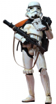 Hot Toys 1:6 Scale Sand Trooper 12 inch Figure A New Hope